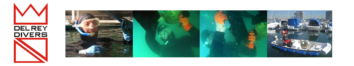 Del Rey Divers – (310) 822.8200 / (805) 385.4222 / Dive services / boat bottom cleaning