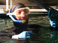 del-rey-divers-hull-cleaning-mdr